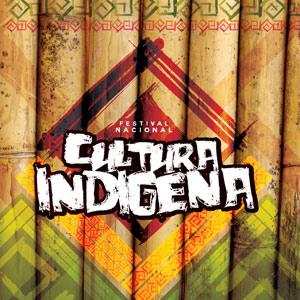 dest-festival-indigena-bertioga