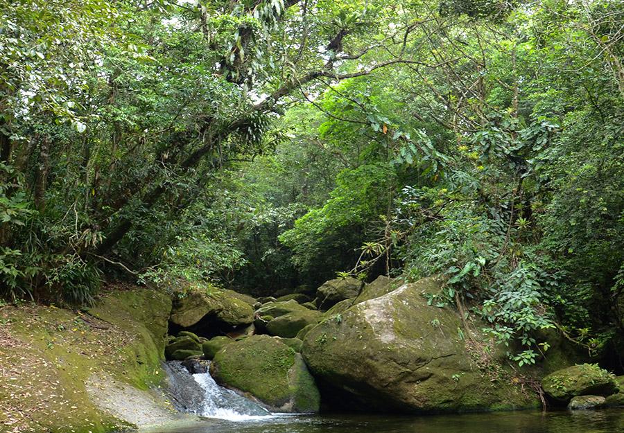 parque-nacional-restinga08